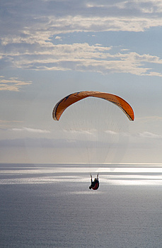 Soaring Over The Ocean Royalty Free Stock Images - Image: 2136699