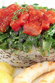 Slice Of White Sea Bass With Vegetables Royalty Free Stock Photography - Image: 21307917