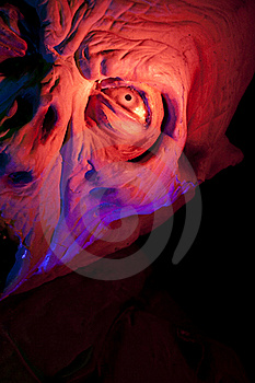 Scary Monster Close Up Stock Photo
