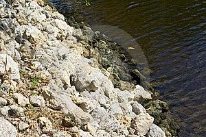 Water Embankment Royalty Free Stock Image - Image: 21308276