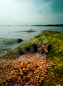 Summer Time On The Sea. Stock Images - Image: 21314444