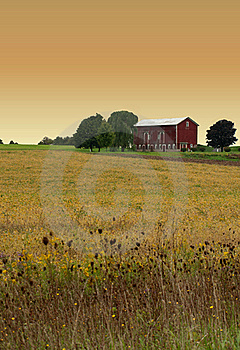 Rural Evening Stock Photography - Image: 21319782