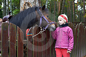 Girl And A Little Horse Pony Royalty Free Stock Photos - Image: 21373228