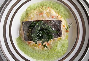 Moder Cuisine - Grilled Fish Royalty Free Stock Photo - Image: 21387575