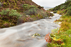 Mountain Stream Royalty Free Stock Images - Image: 21389409