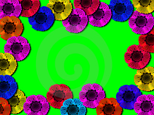 Multi-coloured Flowe Stock Images - Image: 2149694