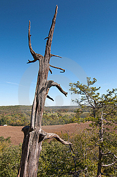 View From The Bluff Stock Images - Image: 21409204