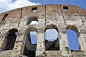 Bird At Colosseum Stock Image - Image: 21426711