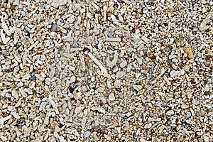 Shoreline Texture Royalty Free Stock Photography - Image: 21432317