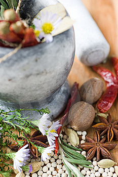 Spices And Aromatic Herbs Stock Photography - Image: 21436712