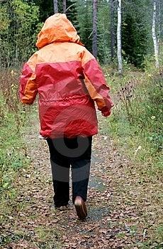 Hiking Woman Stock Photo - Image: 21438710