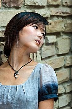 Fashion Girl  On Brick Background Stock Photography - Image: 21457702