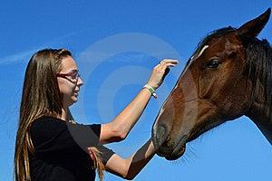 Girl Caressing Horse Royalty Free Stock Photos - Image: 21460208