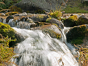 Water Stream Stock Photography - Image: 21498472