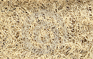Sponge Texture Royalty Free Stock Images - Image: 21543199