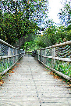 Wooden Bridge Royalty Free Stock Images - Image: 21559489