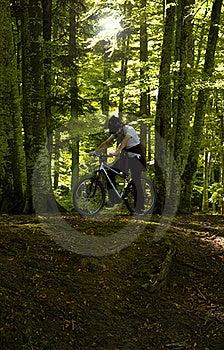 Mountain Biker Royalty Free Stock Photography - Image: 21603047