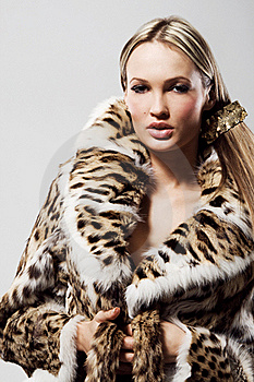 Beautiful Model In Fur Royalty Free Stock Photo - Image: 21640425