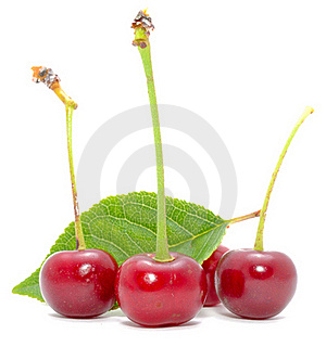 Cherries With Green Leaf Royalty Free Stock Photography - Image: 21662717