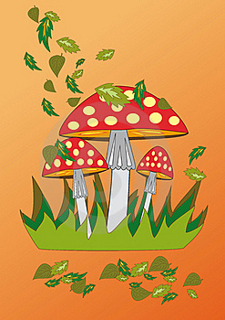 Fly-agaric Stock Images - Image: 21673994