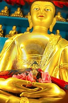 Golden Buddha Stock Photography - Image: 21694422