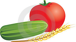 Tomato, Cucumber And Wheat Ear Royalty Free Stock Photos - Image: 21695688