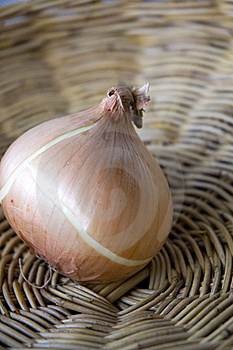 Close Up Onion Stock Images - Image: 21723124