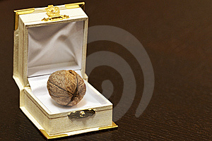 Walnut In A Case Stock Photos - Image: 21739513