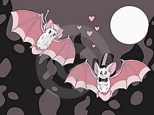 Bats Stock Photos - Image: 21757593
