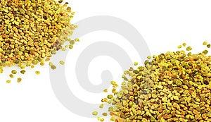 Bienenblütenstaub Lizenzfreie Stockfotos - Bild: 21775928