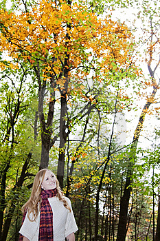 Woman In Autumn  Stock Images - Image: 21777614