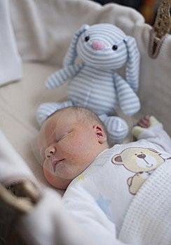 Newborn Baby Boy Asleep With Cuddly Toy Royalty Free Stock Photo - Image: 21840505