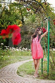 Het Sexy Elegante Vrouw Openlucht Stellen Stock Afbeelding - Afbeelding: 21869651