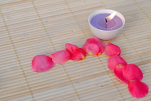 Purple Candle With Rose Petals Royalty Free Stock Images - Image: 21873499