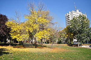 Autumn Scene Royalty Free Stock Photos - Image: 21934998