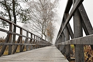 Wooden Pathway Straight Forward Royalty Free Stock Photography - Image: 21942567