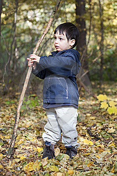 Child In Forest Stock Photography - Image: 21943312