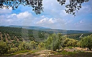 Magnificent Panorama Of Villanueva De Algaidas Stock Photography - Image: 21980522