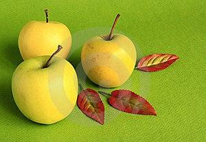 Yellow Apples. Royalty Free Stock Photos - Image: 21983098