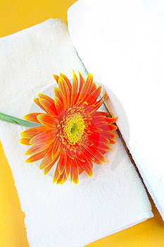 Flower And Towel Stock Photo - Image: 21997490