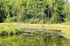 Wooden Bridge Over Pond - Horizontal Free Stock Photo