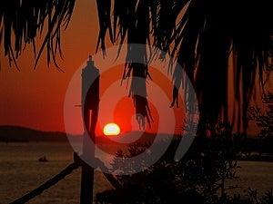Sunset02 Free Stock Image