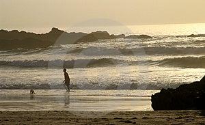 日落海滩 库存图片