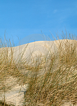 Dunes On The Island Free Stock Images
