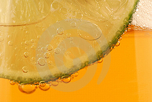 Beer With Lime Stock Photography - Image: 22014942