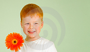 Adorable Redheaded Boy With Orange African Daisy Stock Photo - Image: 22015460