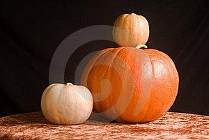 Jack O Lantern Royalty Free Stock Photo - Image: 22018825