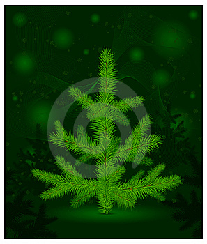 Christmas Fur-tree On Green Royalty Free Stock Images - Image: 22022809
