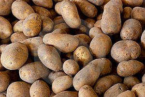 Fresh Pick Potatoes At Farmers Market Royalty Free Stock Photography - Image: 22088847
