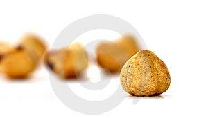 Hazelnuts 0027 Royalty Free Stock Images - Image: 22094429